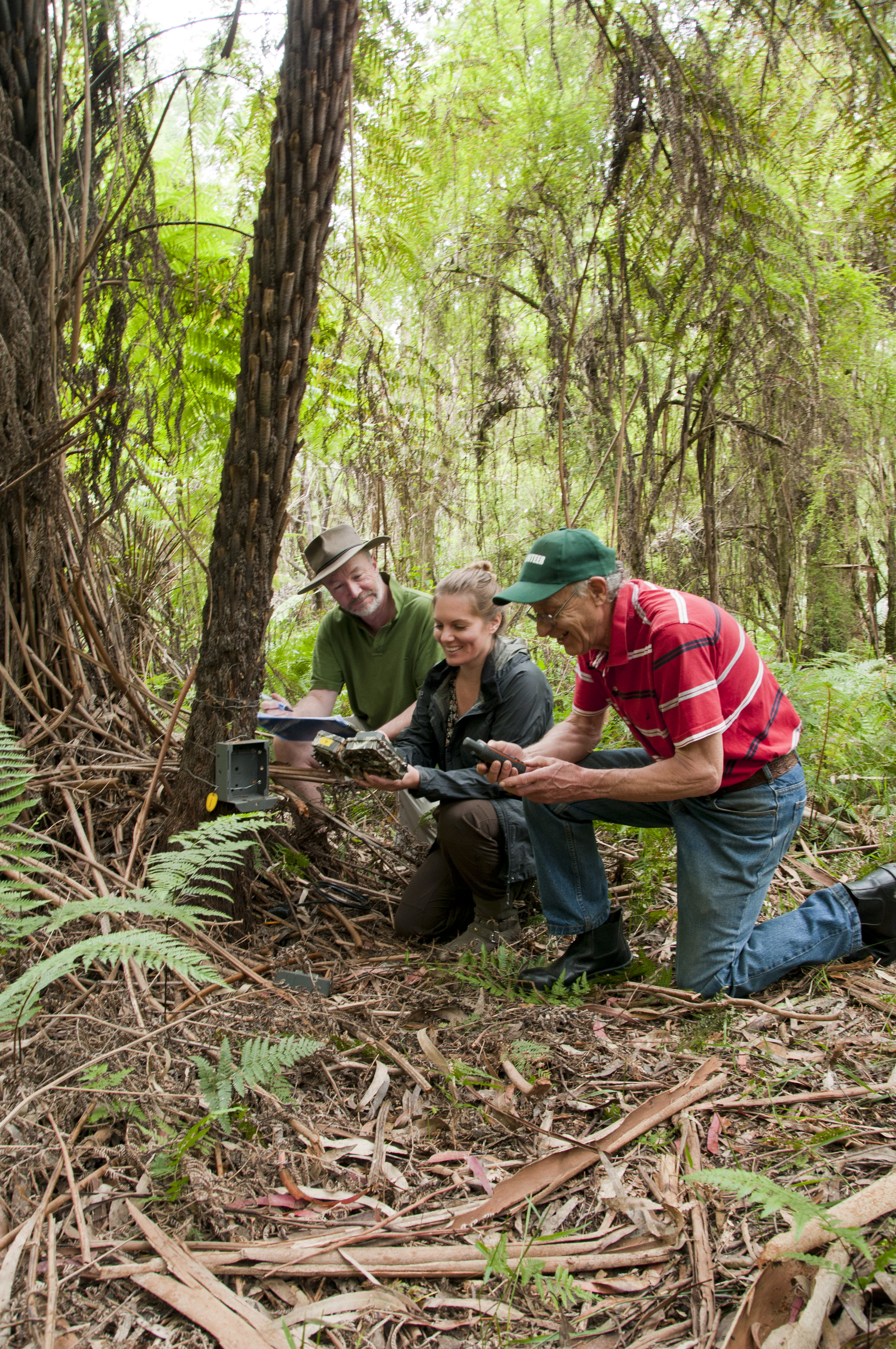 Ian Vaskess (left), Jasper Hails (from Friends of Bunyip State Park) and Christine Connelly (from Victorian National Parks Association)  checking a wildlife monitoring camera trap. Photograph by Tracey Koper