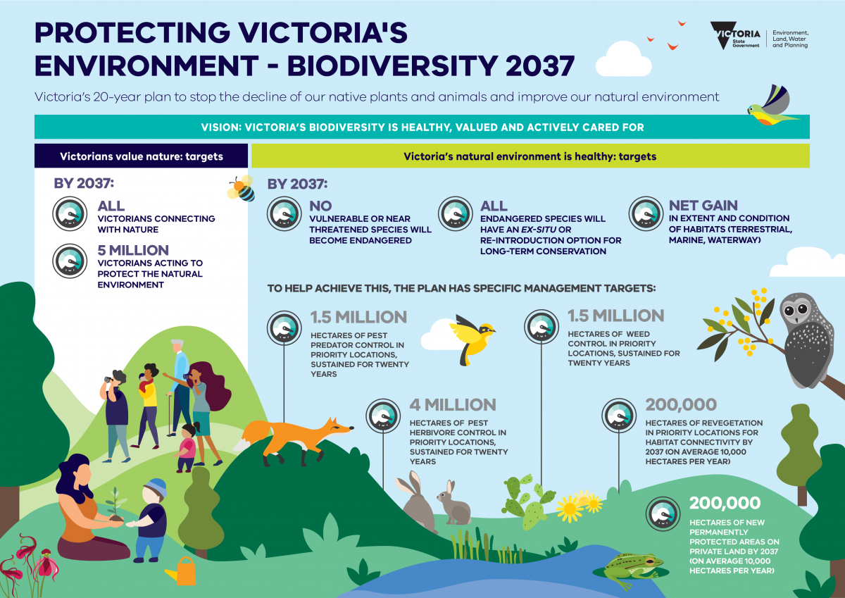 This infographic describes the Department of Environment, Land, Water, and Planning's (DELWP) original targets in the Protecting Victoria's Environment - Biodiversity 2037 Plan. It features a header with the text 'Protecting Victoria's Environment - Biodiversity 2037 Victoria's 20-year plan to stop the decline of our native plants and animals and improve our natural environment'. Below this title is the text 'Vision: Victoria's biodiversity is healthy, valued and actively cared for'.  It has the DELWP Victorian Government logo in the top right corner. The infographic features several designed graphics of animals, plants, landscapes, and many people. It also features invasive species such as foxes, rabbits, and prickly pear cacti.  Under the title are two columns that show the Biodiversity 2037 Plan targets with corresponding graphical icons, they include the following:  Victorians Value Nature: targets  By 2037:  *First icon with text next to it stating 'All Victorians connecting with nature'  *Second icon with text next to it stating '5 million Victorians acting to protect the natural environment'  Victoria's natural environment is healthy: targets  By 2037:  *Third icon with text next to it stating 'No vulnerable or near threatened species will become endangered'  *Fourth icon with text next to it stating 'All endangered species will have an ex-situ or re-introduction option for long-term conservation'  *Fifth icon with text next to it stating 'Net gain in extent and condition of habitats (terrestrial, marine, waterway)'  To help achieve this, the plan has specific management targets:  *Sixth icon with text next to it stating '1.5 million hectares of pest predator control in priority locations, sustained for twenty years'  *Seventh icon with text next to it stating '1.5 million hectares of weed control in priority locations, sustained for twenty years'  *Eighth icon with text next to it stating '4 million hectares of pest herbivore control in priority locations, s