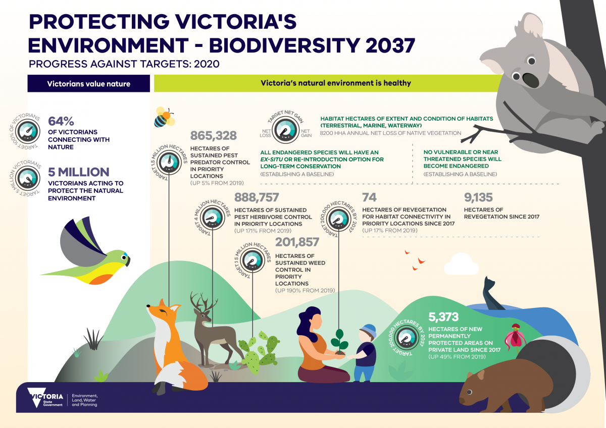 Accessible word version of the Infographic - Biodiversity 2037 Progress Report 2020  This infographic describes how Victoria is tracking against the targets in Protecting Victoria's Environment - Biodiversity 2037 in 2020. It features a header with the text 'Protecting Victoria's Environment - Biodiversity 2037 progress against targets: 2020'. It has the DELWP Victorian Government logo in the bottom left corner. The infographic features several designed graphics of animals, plants, landscapes, and people. It also features invasive species such as foxes and deer.  Under the title are two columns that show progress against the Biodiversity 2037 Plan targets in 2020 with corresponding graphical icons, they include the following:  Victorians Value Nature  *First icon with text 'Target 100% of Victorians' oNext to the icon is the text '64% of Victorian's connecting with nature'  *Second icon with text 'Target 5 million Victorians' oNext to the icon is the text '5 million Victorians acting to protect the natural environment'  Victoria's natural environment is healthy  *Third icon with text 'Net loss' on the left side, then 'target net gain' in the centre, then 'net gain' on the right side. oNext to the icon is the text 'Habitat hectares of extent and condition of habitats (terrestrial, marine, waterway) Under this is the result from this with the text '8200 hectares annual net loss of native vegetation' oUnder this is the text 'All endangered species will have an ex-situ or re-introduction option for long-term conservation' Under this is the result from this with the text 'establishing a baseline' oUnder this is the text 'No vulnerable species or near threatened species will become endangered' Under this is the result from this with the text 'Establishing a baseline'  *Fourth icon with text 'Target 1.5 million hectares' oNext to the icon is the text '865,328 hectares of sustained pest predator control in priority locations' Under this is the result 'up 5 per cent from 201