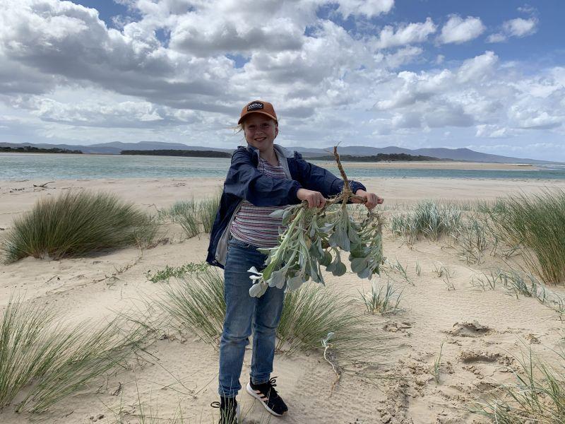 Matisse Turner weeding on the beach