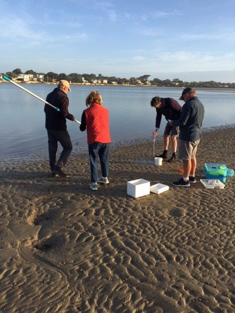 Barwon Estuary Monitoring