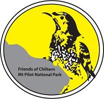 Friends Logo #1 (Yellow)